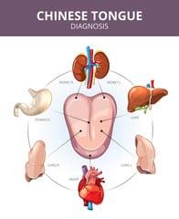 diagnostique langue